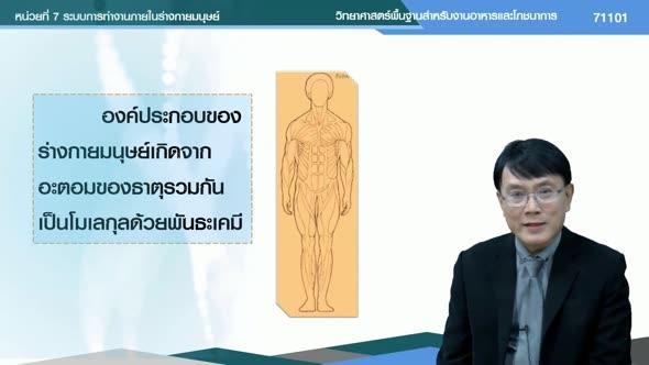 71101 หน่วยที่ 7 ระบบการทำงานภายในร่างกายมนุษย์