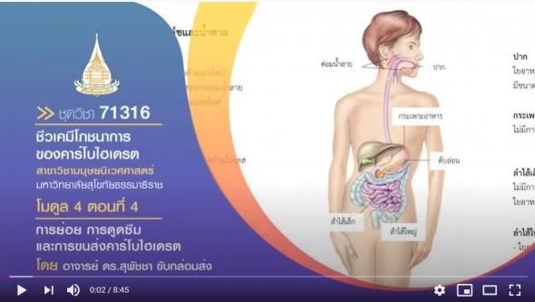 มสธ. 71316 สรีรวิทยาและชีวเคมีทางโภชนาการ โมดูล 4 ตอนที่ 4