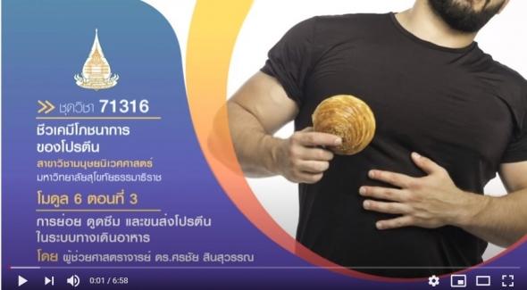 มสธ. 71316 โมดูล 6 ตอนที่ 3 การย่อย ดูดซึม และขนส่งโปรตีนในระบบทางเดินอาหาร