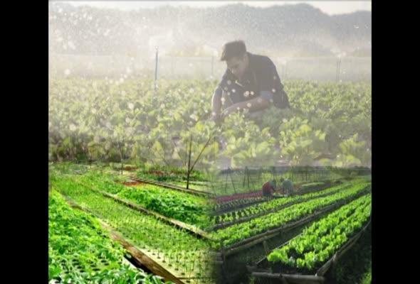 91349 สารสนเทศและสื่อที่ใช้ในงานส่งเสริมการเกษตร  ครั้งที่ 1 ตอนที่ 2