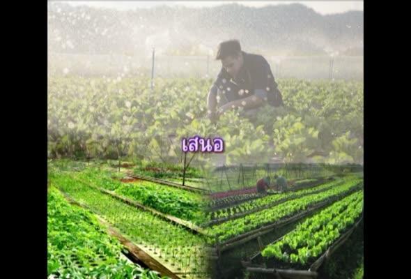 91349 สารสนเทศและสื่อที่ใช้ในงานส่งเสริมการเกษตร ครั้งที่ 4 ตอนที่ 1
