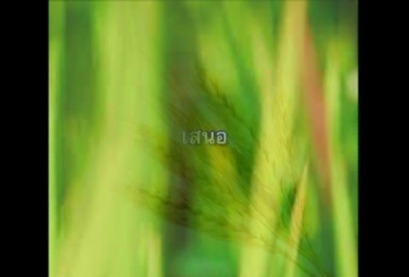 93353 การจัดการผลผลิตพืช ครั้งที่ 2 เรื่อง แนวคิดเกี่ยวกับการเก็บเกี่ยวผลผลิตพืช ตอนที่ 1