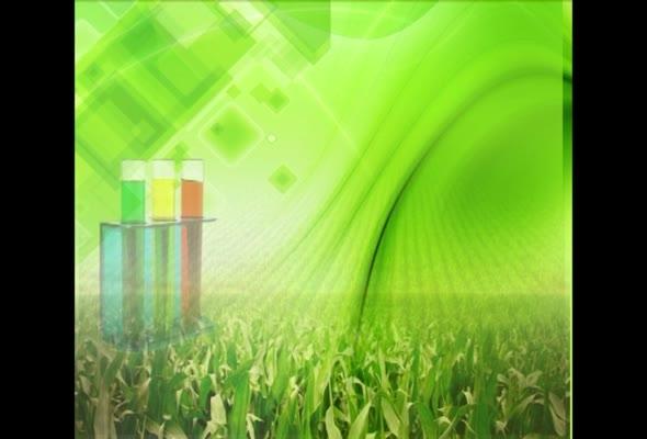 วิทยาศาสตร์การผลิตพืชภาค1/2559