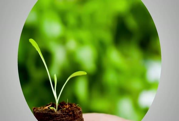 91109 หน่วยที่ 9 นวัตกรรมในการส่งเสริมและพัฒนาการเกษตรในองค์กร